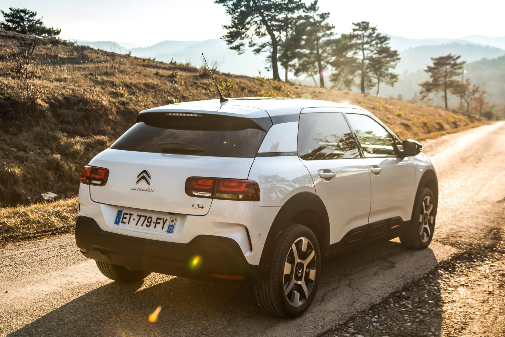 Citroën C4 Cactus PureTech 110 Business (2018)