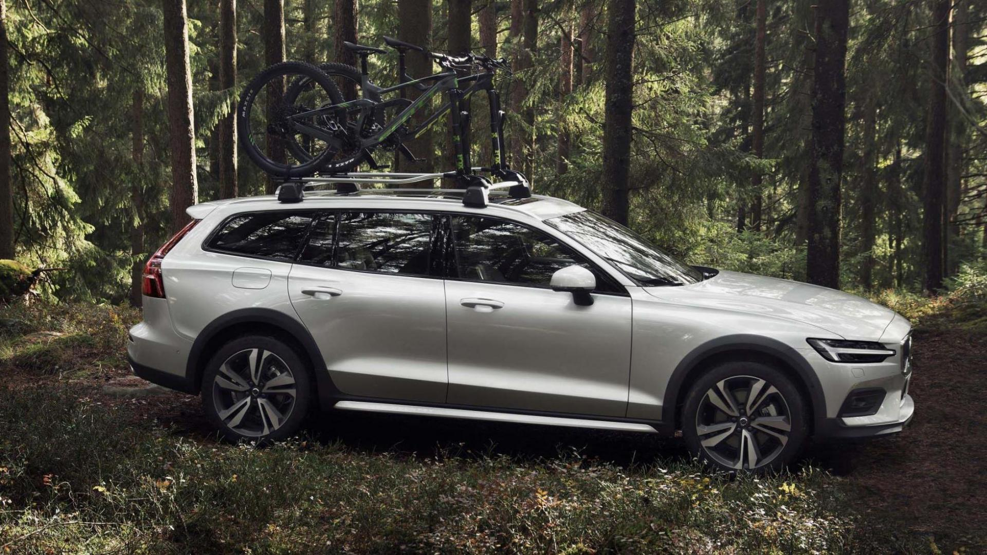 Volvo V60 Cross Country fiets bos dakdrager
