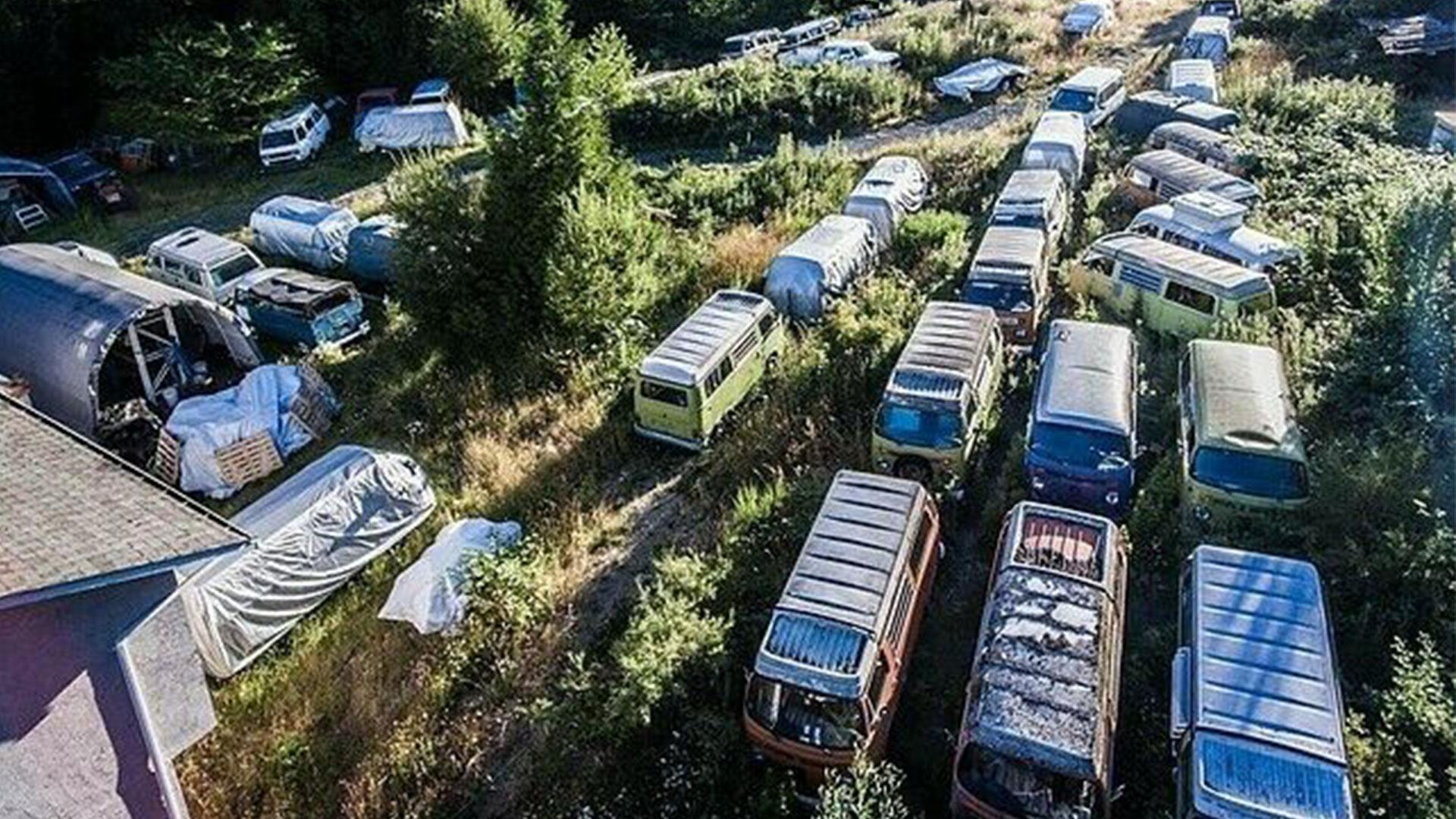 55 Volkswagen busjes te koop