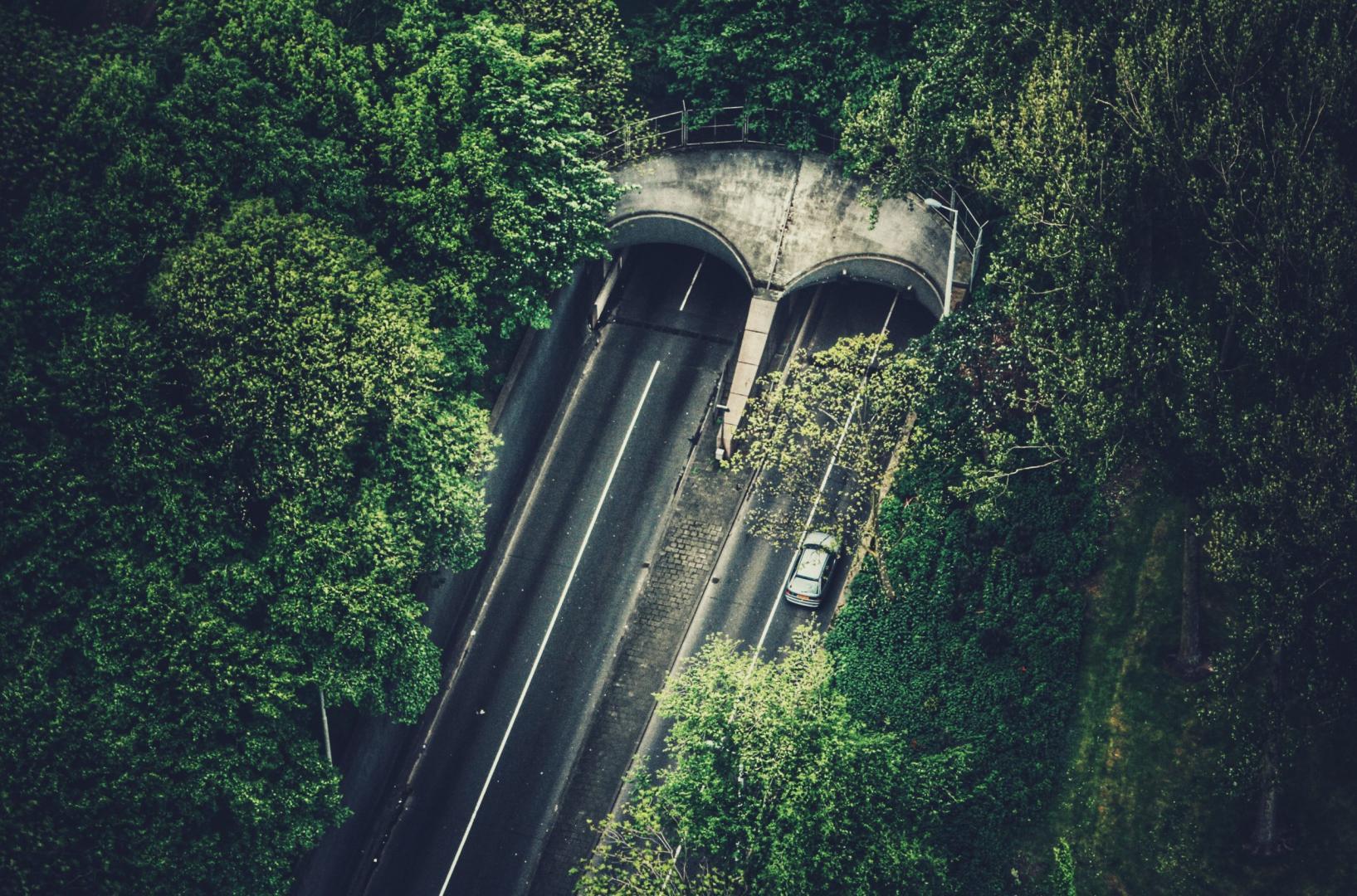 Ecoduct Snelweg