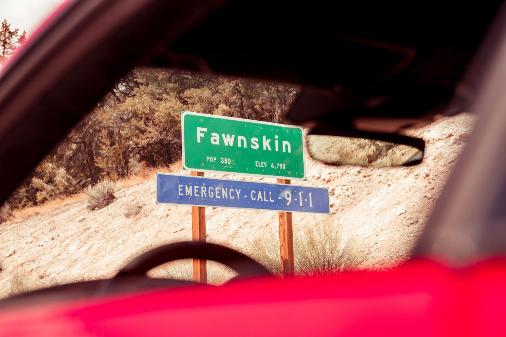 Fawnskin bord lang Amerikaanse weg