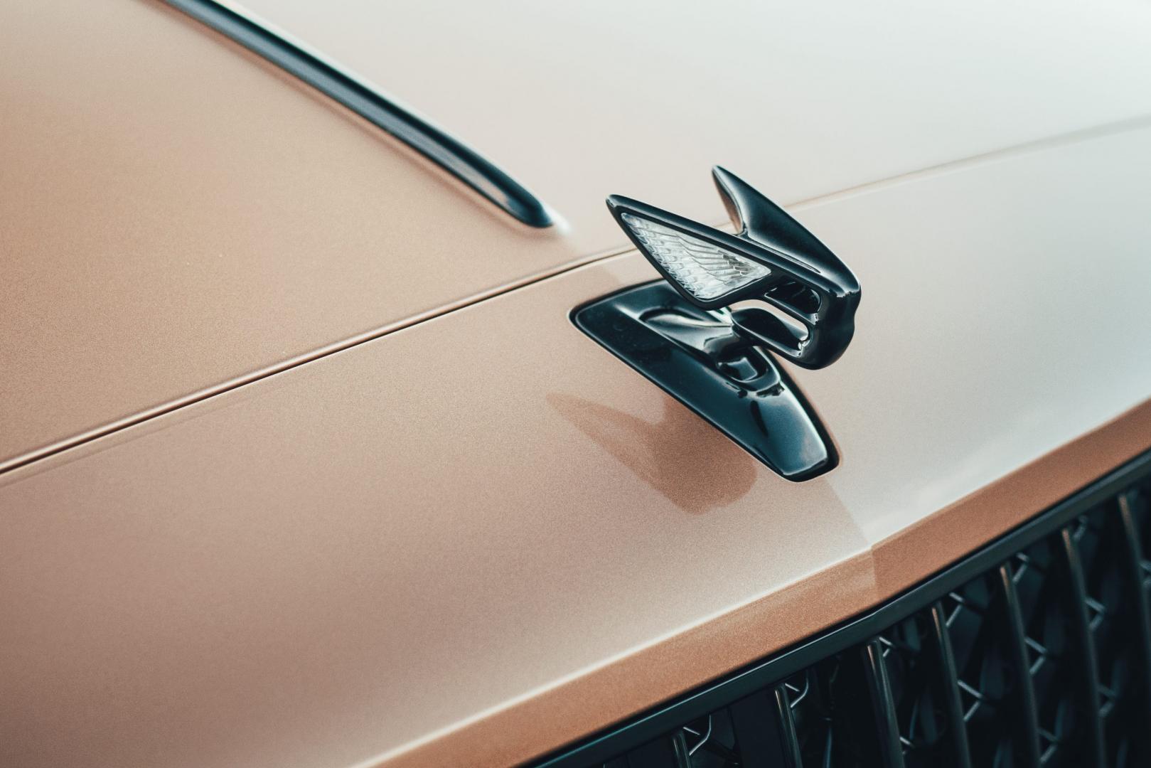 Ornament van Bentley. Big B genoemd. Deze is lichtgevend
