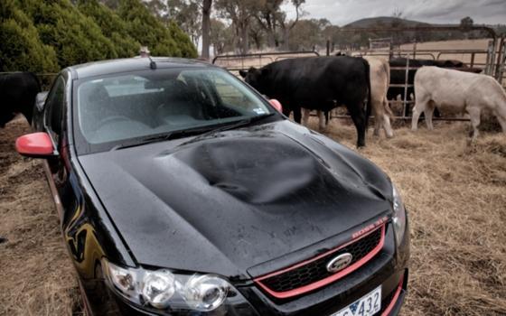 Ford vs Holden: utes in Australië - TopGear