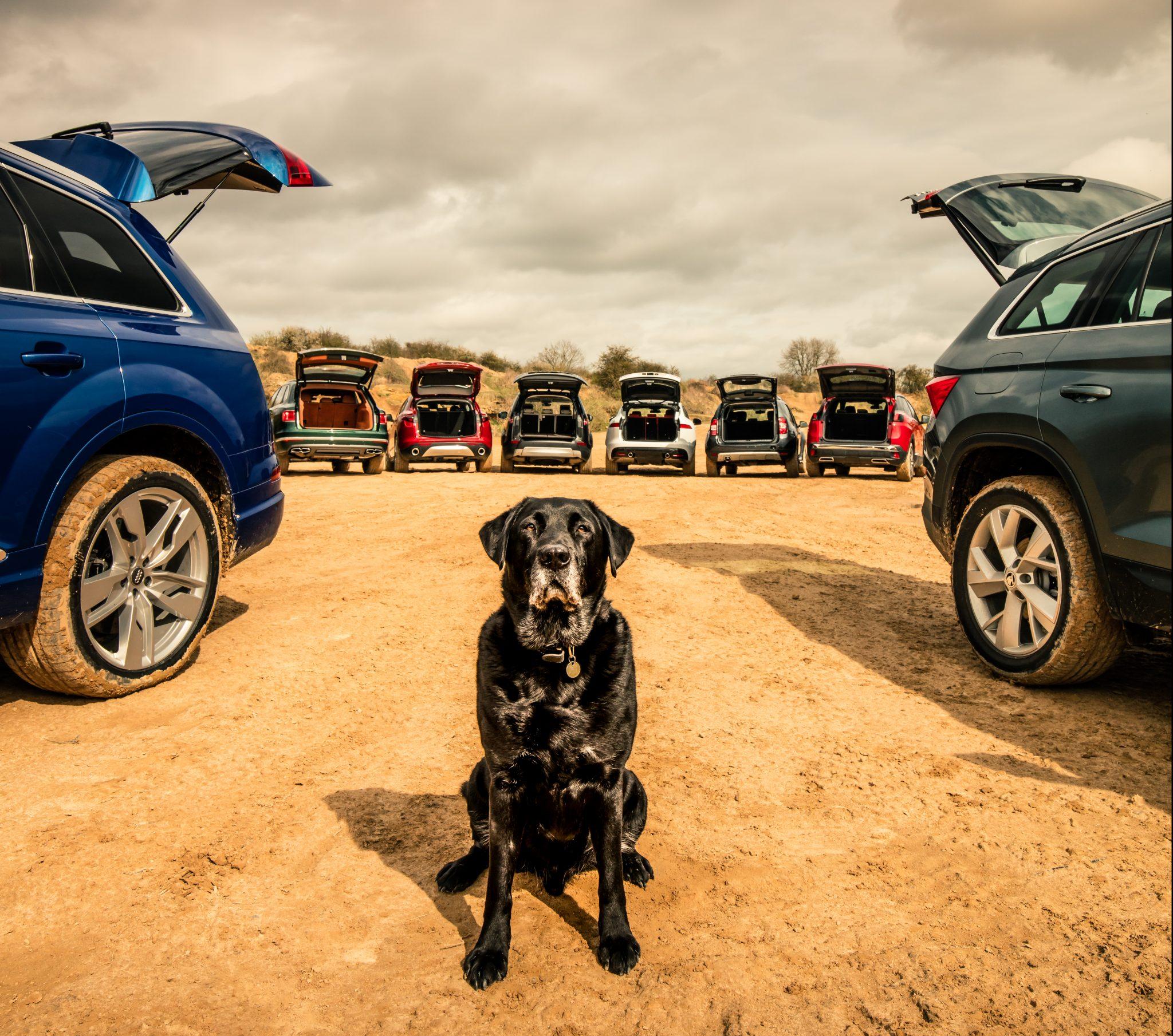 SUV-test: Bruikbaarheid