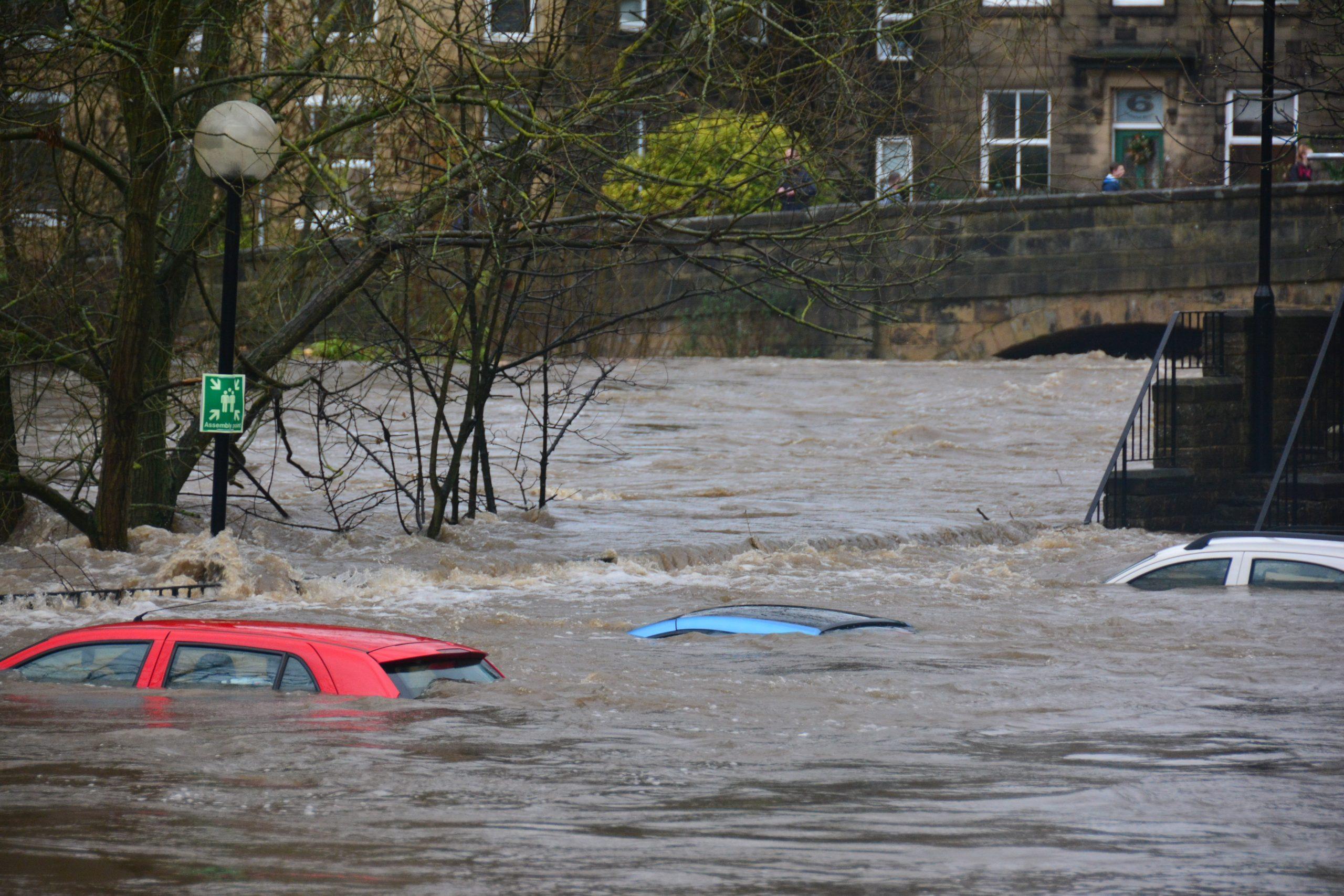 800 auto's met waterschade geïmporteerd