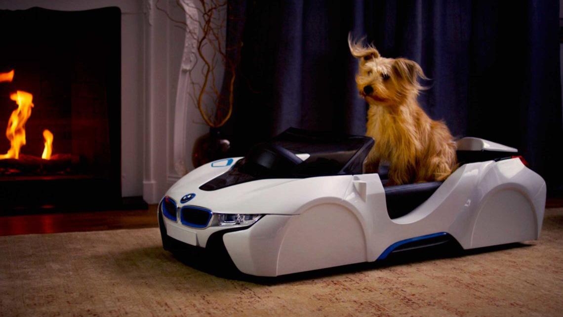 BMW i8 Roadster hondenmand